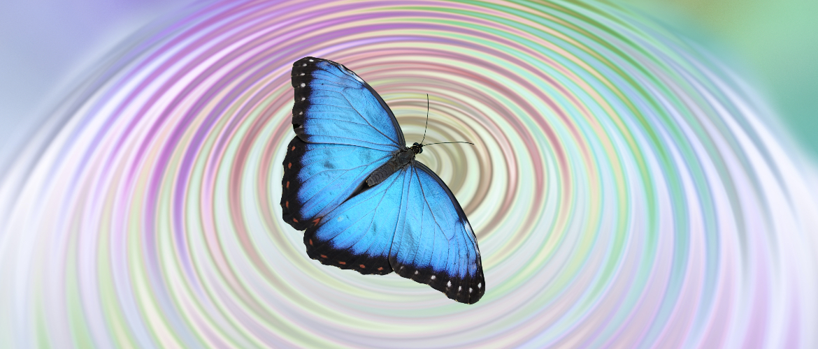 The Butterfly Effect - and the Psychic Power of One - The Psychic School